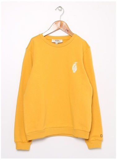 National Geographic Sweatshirt Hardal